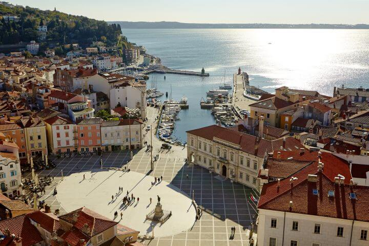 Carpaccio's Year in Piran